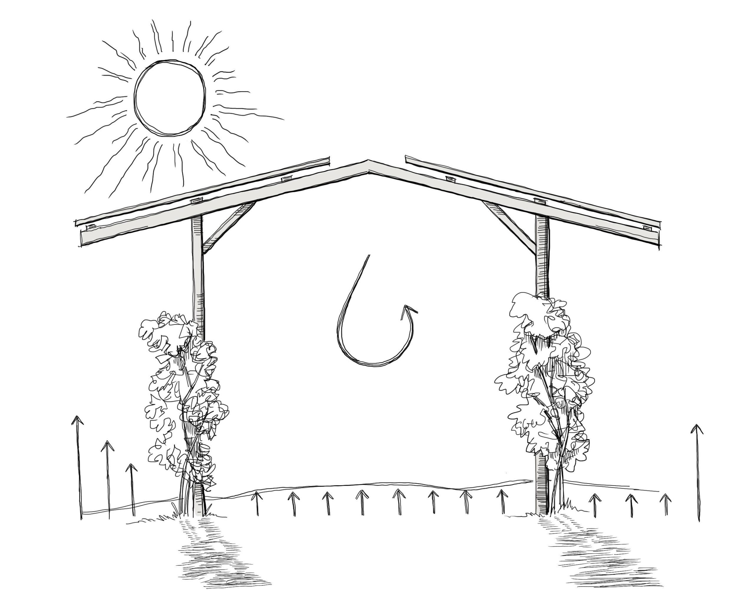 Vorteile-Agri-PV-Solardach-über-Agrarfläche optimierte Bewässerung