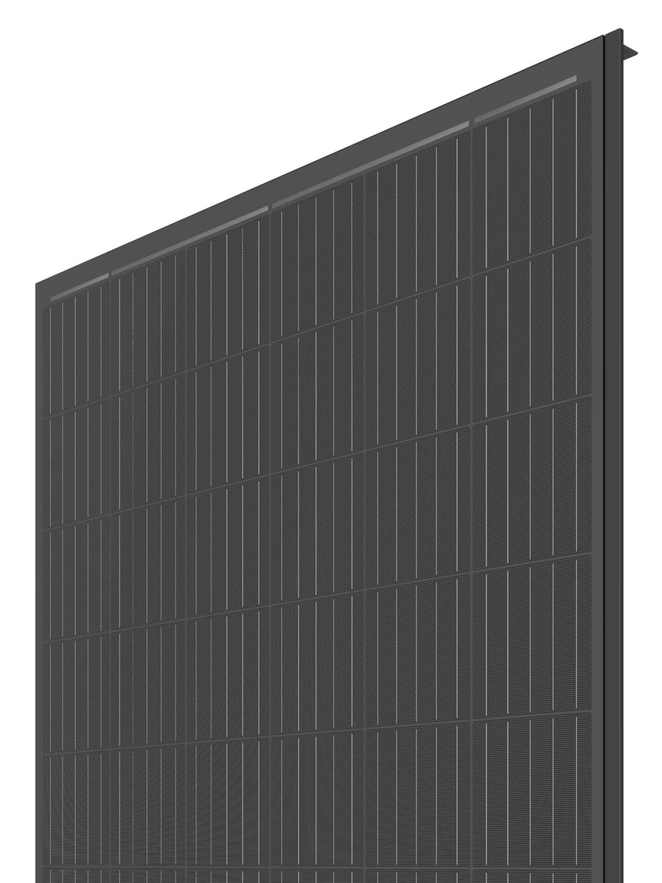 NICER Farbvariante schwarz